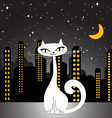city cat vector image