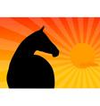 dark horse vector image