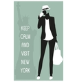 New york travel card vector image