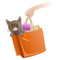 Cat in a present package vector image