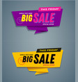 limited offer mega sale banner vector image