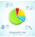 Infographic Pie Chart vector image vector image