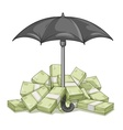 Umbrella protecting bundles vector image vector image