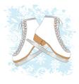 Ice skates background vector image