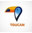 Tropical bird toucan vector image