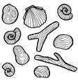 shells and stones vector image
