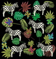 butterfly zebra and tropical leaves vector image