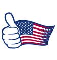 USA thumbs up vector image