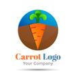 Carrot vegetable logo Volume Logo Colorful 3d vector image