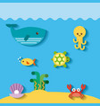 sea life flat draw vector image