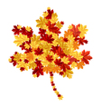 Maple leaf consisting of other leafs vector image vector image