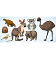 Different types of wild animals in Australia vector image