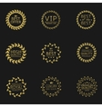 Golden laurel vector image