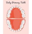 Human teeth infographic Teeth Infographic vector image