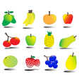 tasty fruits set tutty frutty vector image