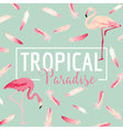 Tropical Bird Flamingo Background Summer Design vector image