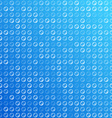 Water bubbles vector image