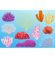 Corals vector image vector image