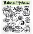 Hand drawn natural medicine herbs and healing set vector image