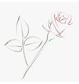 Sketched rose vector image