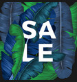 sale inscription hidden in palm tree leaves vector image