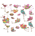 birds colorful vector image