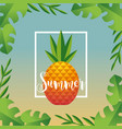 summer vacation with tropical pineapple fruit vector image