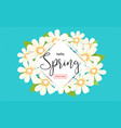hello spring season time sales season banner vector image