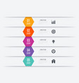 Infographics five options vector image