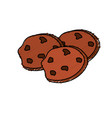 tasty chocolate cookies and snack food vector image