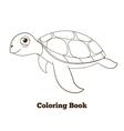 Coloring book turtle sea animal vector image