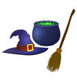 halloween witch hat vector image