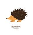Colorfu cartoon hedgehog logo vector image
