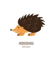 Colorfu cartoon hedgehog logo vector image