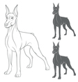 Set of with Doberman vector image
