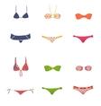 female swimwear vector image