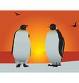 antarctica penguins vector image vector image