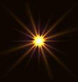 yellow shining star vector image