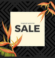 tropical summer sale with heliconia sunset orange vector image