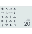 Set of tavern icons vector image