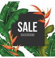 sale background with tropical vector image