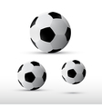 Football Balls Set Isolated on Grey Background vector image