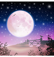 Moon and Night Sky vector image