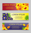 tropical leaves and flowers banners template vector image