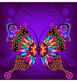 Colorful and lace butterflies vector image