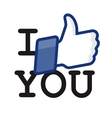 LikeThumbs Up symbol icon - I like you vector image vector image