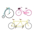 Vintage bicycle flat vector image