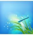 Dragonfly on Grass Blade vector image