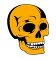 human skull icon icon cartoon vector image