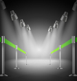 The shined green way entrance vector image vector image